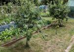 bill-aven_event-701_hidden-gardens_vallis-vale-allotments_ff2017_9304