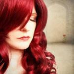 Phone Class GOLD Scarlet Rose by Samantha Pitt