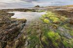 Scapes Class  - Bamburgh Beach by Patrick Emery