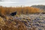 Forsaken Boat
